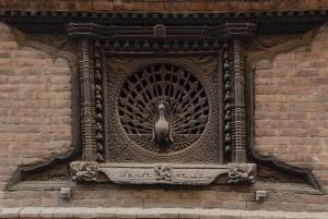 peacock-worlds-best-window-design